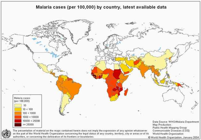 Understanding epidemics section 3c geography source who global atlas gumiabroncs Images