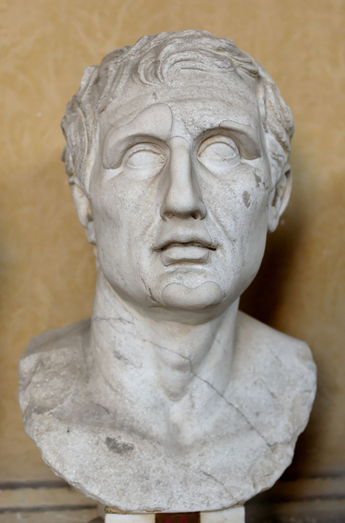 Menander of Athens (Roman copy of a Greek bust)